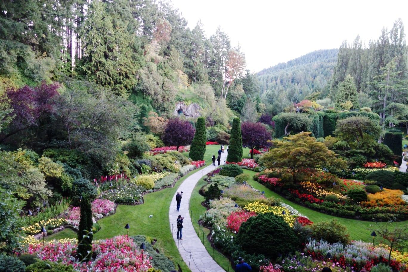Butchart Gardens And Butterfly Gardens Review Eatsleepcruise Com