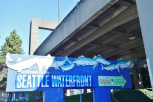 Seattle Waterfront Thins You Must See in Seattle