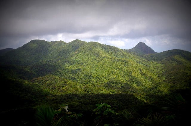 El Yunque Rainforest Tour