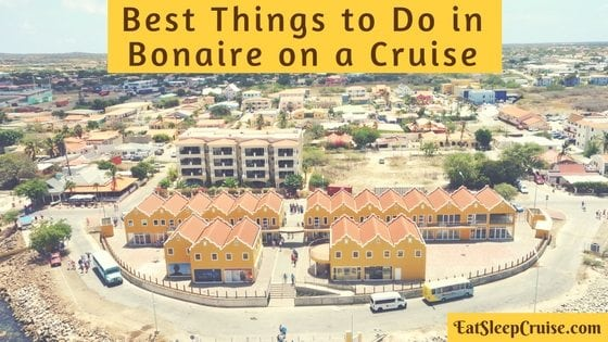 Best Things to Do in Bonaire on Cruise