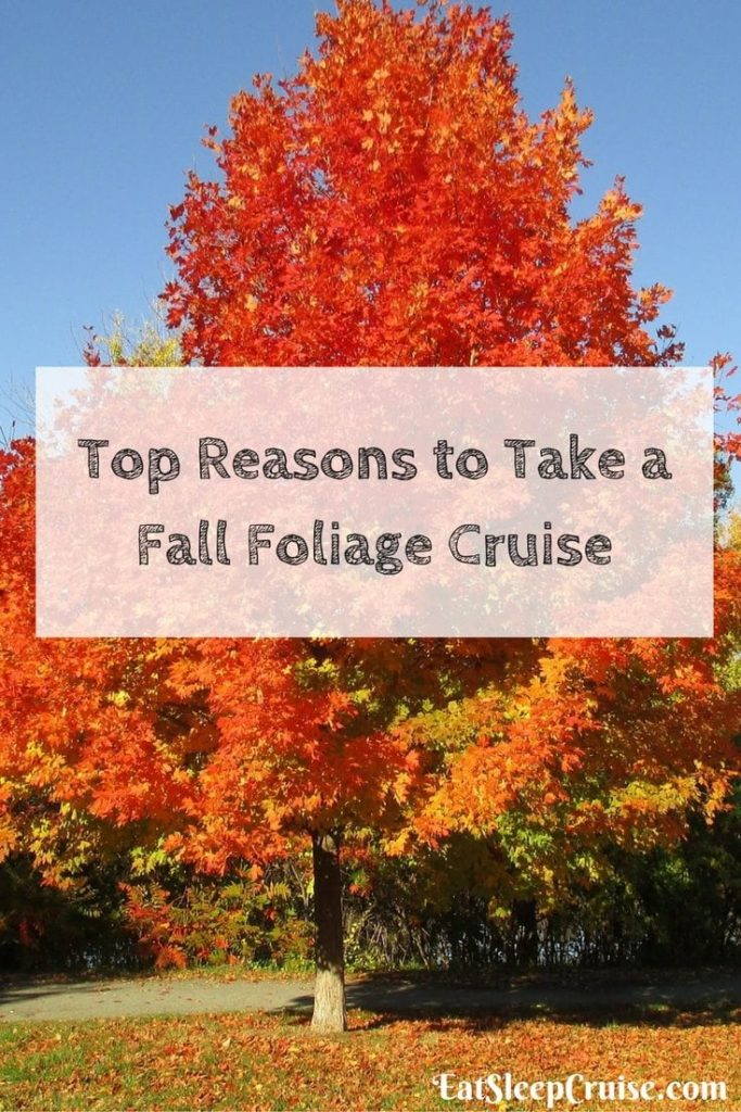 Top 10 reasons to take a fall foliage cruise in 2016 for Best cruise to take