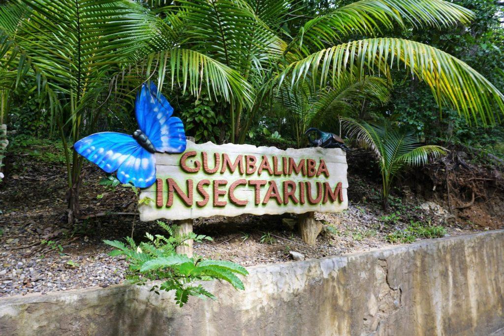 6 Photos to Take at Gumbalimba Park Roatan