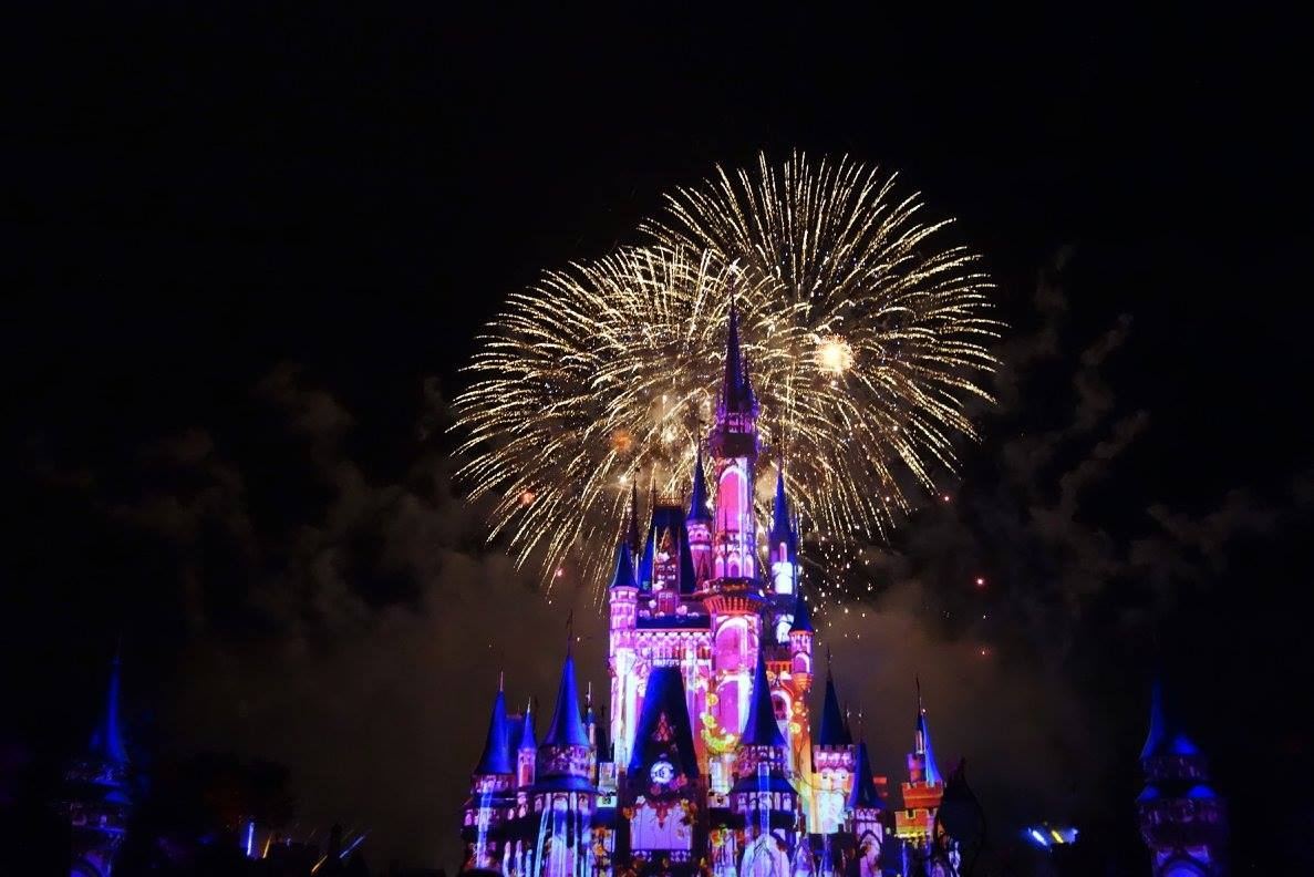 Should You Go To Disney World As A Shore Excursion