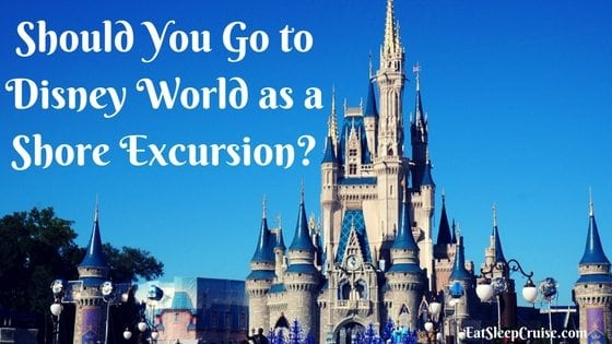 Should You Go to Disney World as a Shore Excursion?