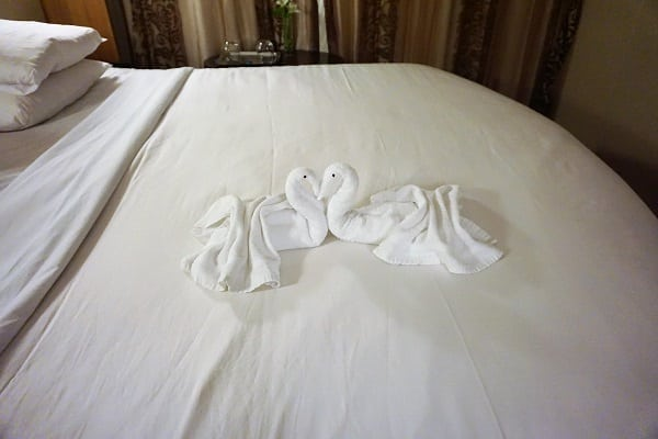 Towel Animal Celebrity Eclipse
