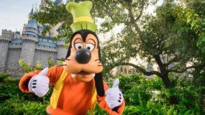 Planning a Trip To Disney world 2021
