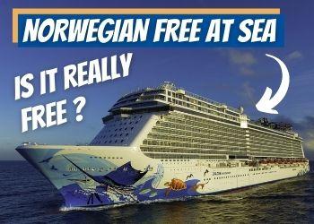 Norwegian Free at Sea Review